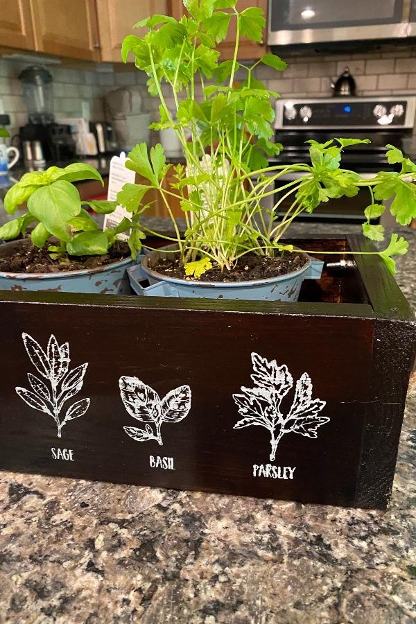DIY Herb Wooden Planter Box