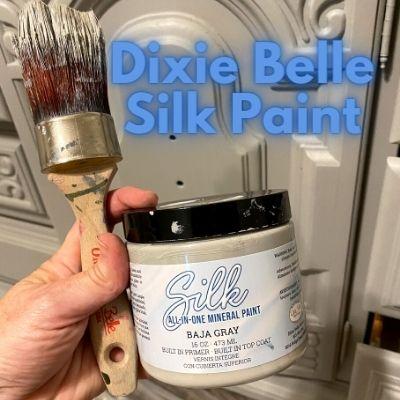 Dixie Belle Silk Paint